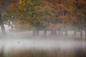 A Woman with Her Dog Stands by a Mist Shrouded Pond in Richmond Park in Autumn by Alex Saberi