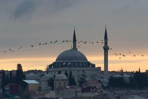 Birds Fly by a Mosque at Sunset by Alex Saberi