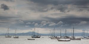 Fishing Boats Line Up Near the Coast of Florianopolis Island in Santa Catarina, Brazil by Alex Saberi
