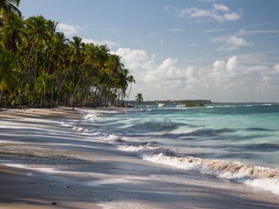Praia Do Carneiros Near Tamamdere, North-Eastern Brazil