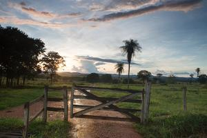 Sunset at the Gate of a Bonito Farm, with Rolling Hills in the Background by Alex Saberi