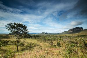 The Landscape of Chapada Dos Veadeiros National Park and the Jardim De Maitreya by Alex Saberi