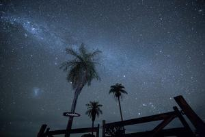 The Milky Way Above Palm Trees and a Wooden Farm Gate by Alex Saberi