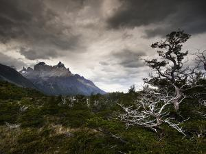 The Torres Del Paine Mountains on a Cloudy Day by Alex Saberi