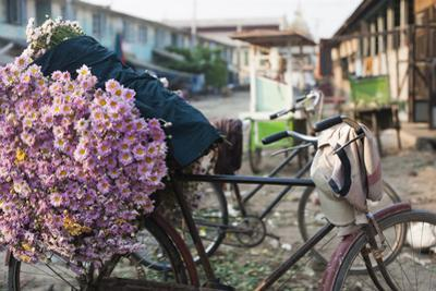 A bike loaded with fresh flowers at the flower market in Mandalay, Myanmar (Burma), Asia by Alex Treadway