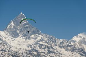 A Paraglider Hangs in Air with Dramatic Peak of Machapuchare (Fishtail Mountain) in Distance by Alex Treadway
