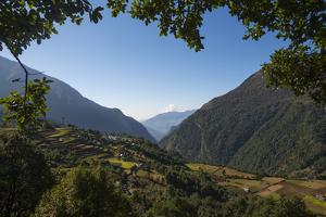A View Through the Trees of Lukla Valley Which Is at the Beginning of the Everest Base Camp Trek by Alex Treadway