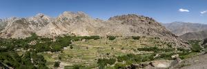 A Village and Terraced Fields of Wheat and Potatoes in the Panjshir Valley, Afghanistan, Asia by Alex Treadway