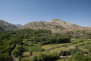 A village and terraced fields of wheat and potatoes in the Panjshir valley in Afghanistan, Asia by Alex Treadway