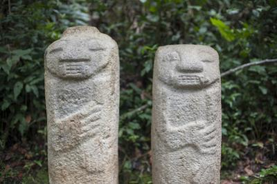 An ancient pre-Columbian stone carving at San Agustin, UNESCO World Heritage Site, South Colombia by Alex Treadway