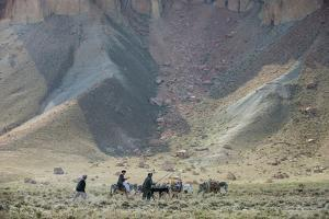 Donkeys and Farmers Make their Way Home Near Band-E Amir, Afghanistan, Asia by Alex Treadway
