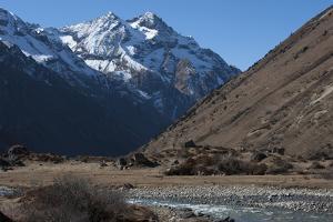 Jangothang valley, Thimpu District, Bhutan, Himalayas, Asia by Alex Treadway