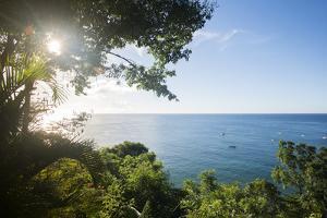 Sunset at Castara Bay in Tobago, Trinidad and Tobago, West Indies, Caribbean, Central America by Alex Treadway