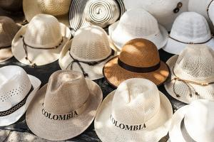 Traditional Panama hats for sale at a street market in Cartagena, Colombia, South America by Alex Treadway
