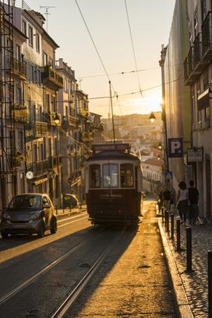 Tram in Lisbon, Portugal, Europe by Alex Treadway