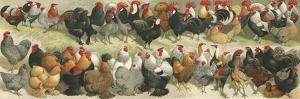 Fowl by Alexander Francis Lydon