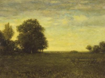 A Meadow with Trees