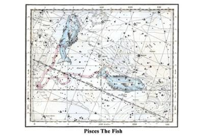 Pisces the Fish by Alexander Jamieson