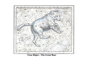 Ursa Major - the Great Bear by Alexander Jamieson