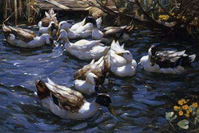 Ducks in the Reeds under the Boughs