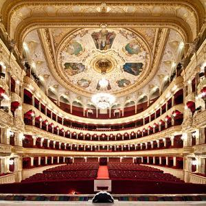 The Odessa National Academic Theater of Opera and Ballet in Ukraine. Central Golden Hall. 06 Jan 20 by Alexander Levitsky