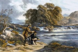 Salmon Fishing by Alexander Rolfe