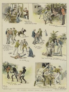 The Amateur Doctor's Remedy for Snake-Bite by Alexander Stuart Boyd