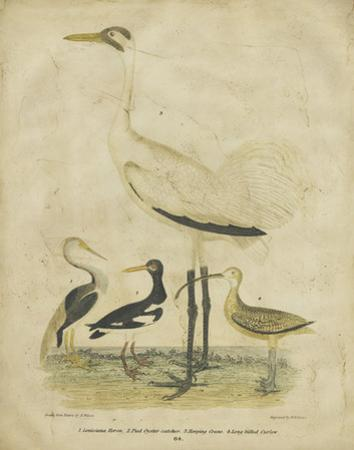 Embellished Crane & Heron