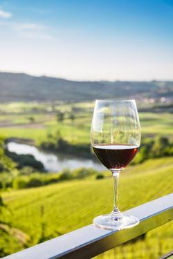 Single wine glass above vineyards, Piedmont, Italy, Europe by Alexandre Rotenberg