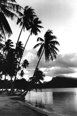 Dreaming of the South Seas, Society Islands, French Polynesia by Alexis De Vilar