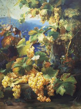 Still Life with Grape by Alexis Kreyder