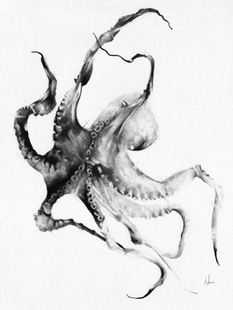 Octopus by Alexis Marcou