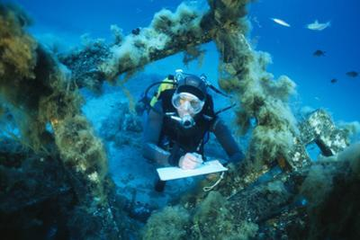 Underwater Biological Research by Alexis Rosenfeld