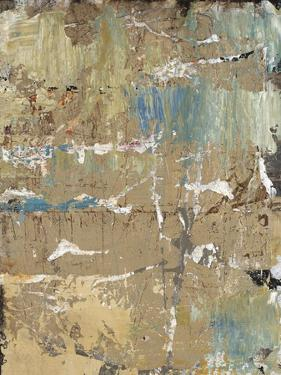 Aged Wall VIII by Alexys Henry