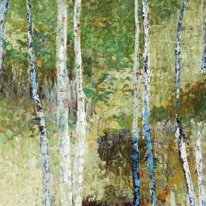 Woodland Birch by Alexys Henry
