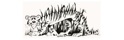 Fact-Finder: Why are Tigers Striped?