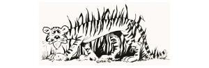 Fact-Finder: Why are Tigers Striped? by Alf Saporito