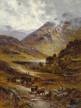 Longhorn Cattle in a Mountainous Landscape, 1892 by Alfred Augustus Glendening