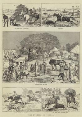 Hog-Hunting in Bengal by Alfred Chantrey Corbould