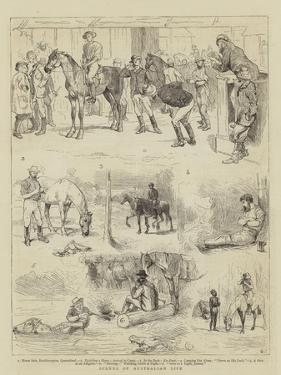 Scenes of Australian Life by Alfred Chantrey Corbould