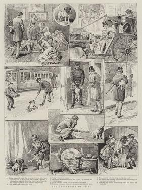 The Adventures of Jim by Alfred Chantrey Corbould