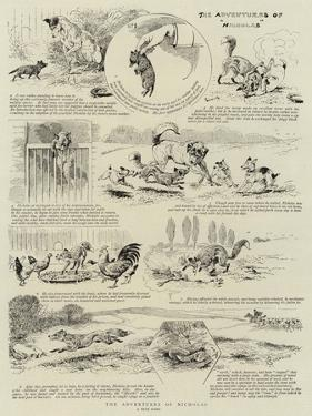 The Adventures of Nicholas by Alfred Chantrey Corbould