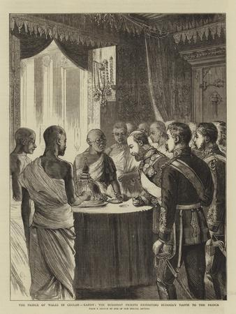 The Prince of Wales in Ceylon, Kandy, the Buddhist Priests Exhibiting Buddha's Tooth to the Prince