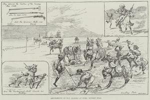Amusements of Our Sailors at Suez, Donkey Polo by Alfred Courbould