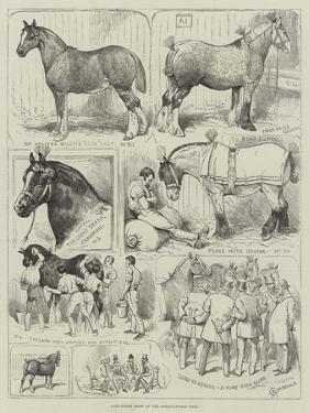 Cart-Horse Show at the Agricultural Hall by Alfred Courbould