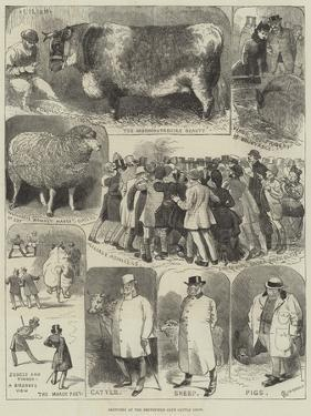 Sketches at the Smithfield Club Cattle Show by Alfred Courbould
