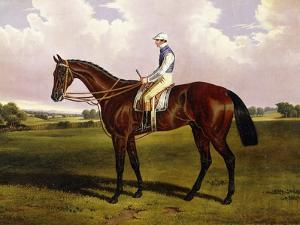 Bloomsbury, a Chestnut Racehorse with Sam Templeman Up, in a Landscape by Alfred de Prades