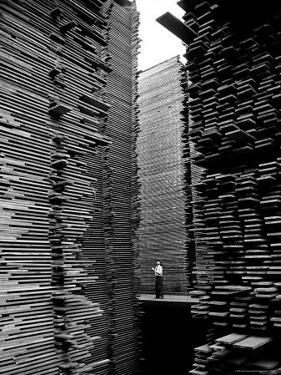 Man Standing in the Lumberyard of Seattle Cedar Lumber Manufacturing by Alfred Eisenstaedt