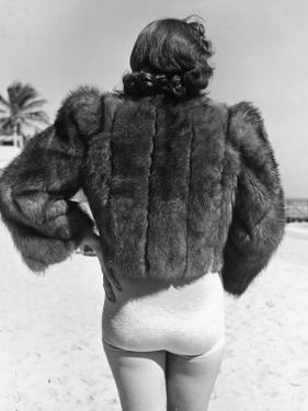 Model Wearing Fur Jacket over Bathing Suit During Walk on Miami's Beac by Alfred Eisenstaedt