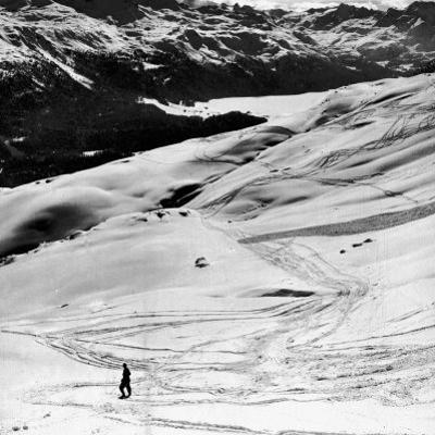 Ski Tracks on Alpine Slopes of Winter Resort by Alfred Eisenstaedt